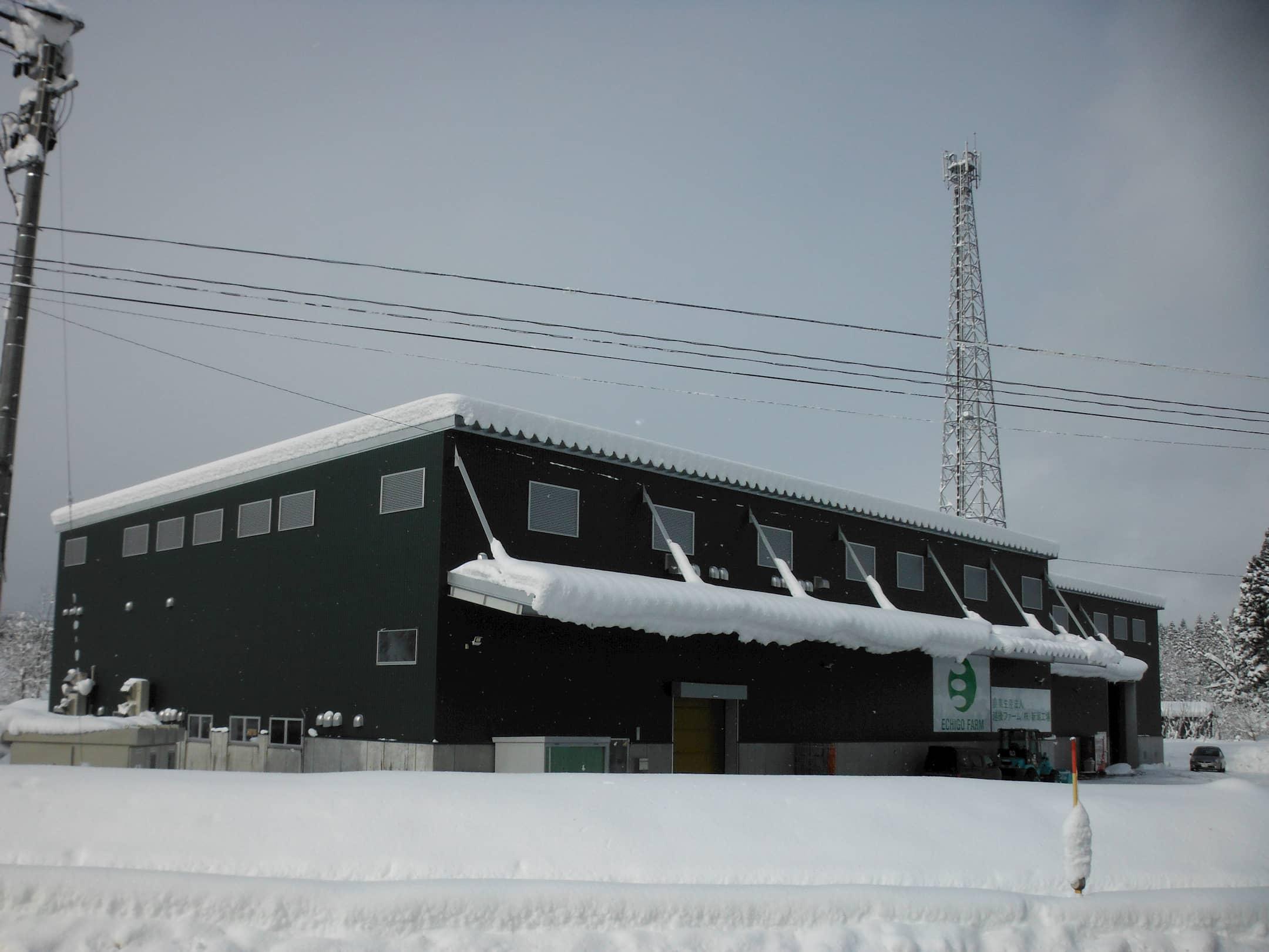 農業生産法人越後ファーム株式会社<br>利雪型米貯蔵庫新築